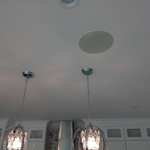 Ceiling mounted speaker