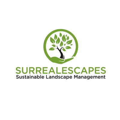 Avatar for Surrealescapes