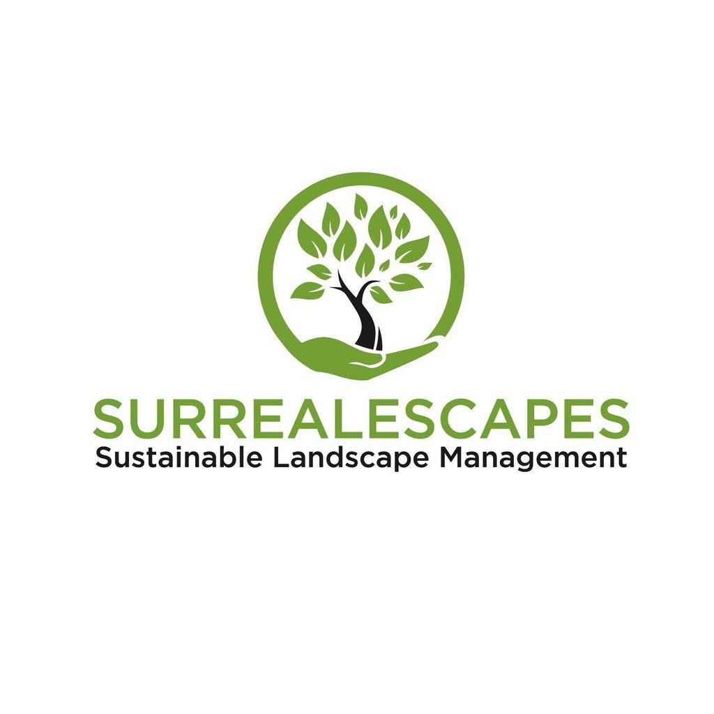 Surrealescapes
