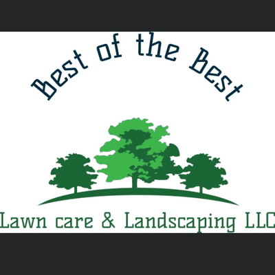 Avatar for Best of the best lawn care and landscaping