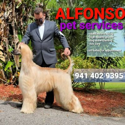 Avatar for Alfonso Pet sServices.grooming training and more!!