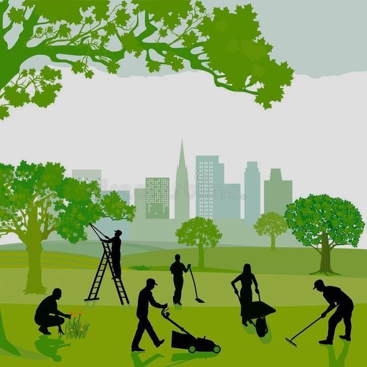 Tree & Landscape Mastery LLC