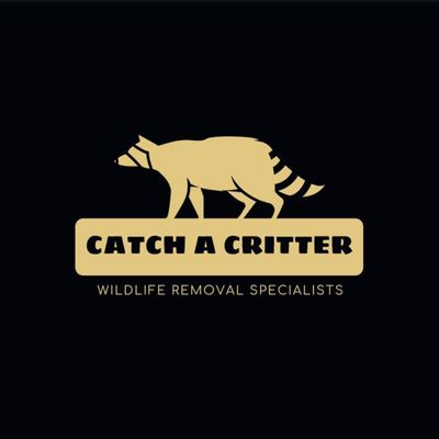 Avatar for Catch A Critter