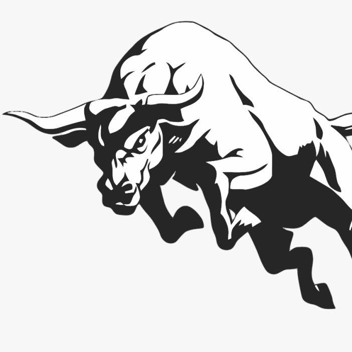 Toro Movers