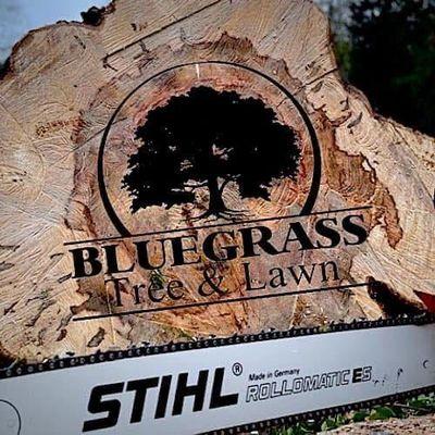 Avatar for Bluegrass Tree&Lawn LLC - Fernandina Branch