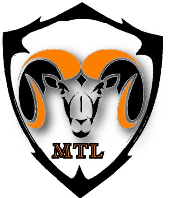 Avatar for MTL LLC