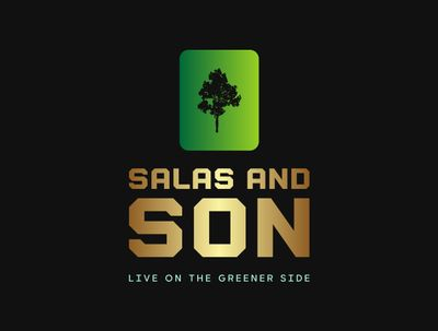 Avatar for Salas and son