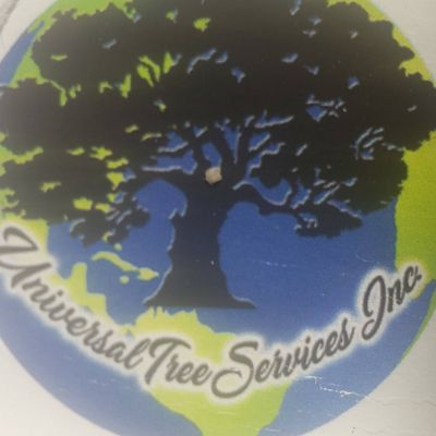 Avatar for Universal Tree Services