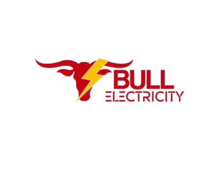 Bull Electric City