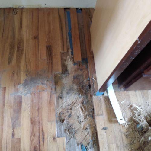 Water damaged hardwood...