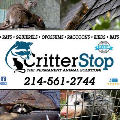 Avatar for Critter Stop