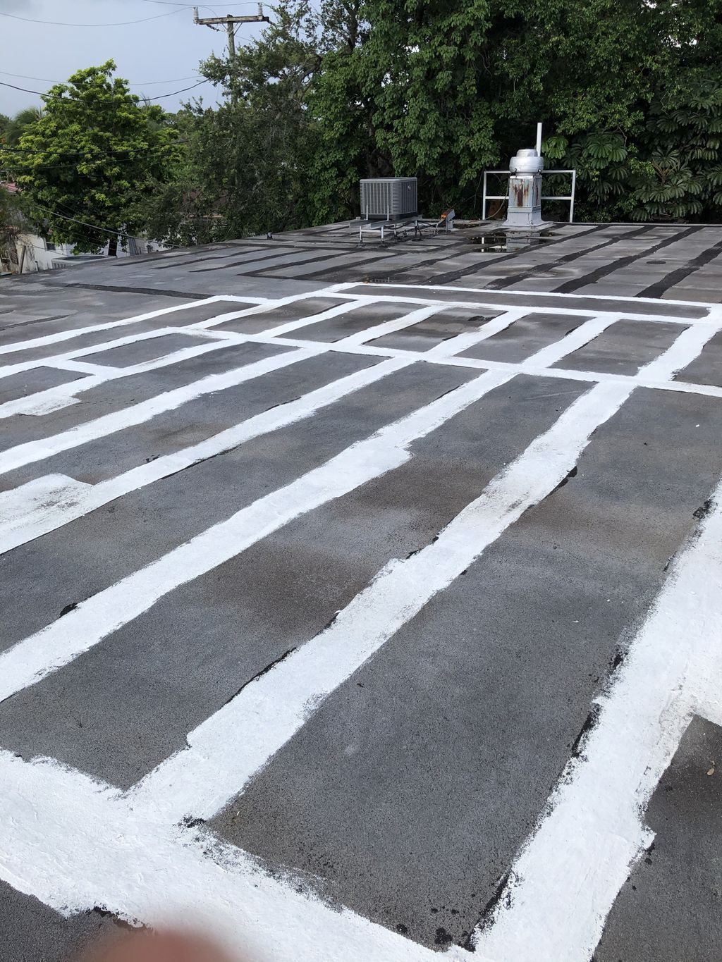 Pro roofing contractor flat roof specialist