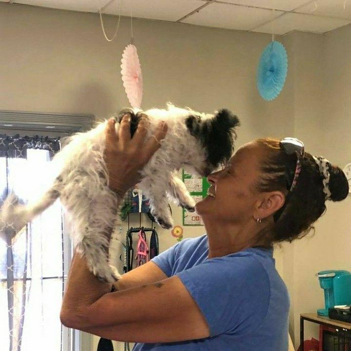 Dog Training at K9 Health Center
