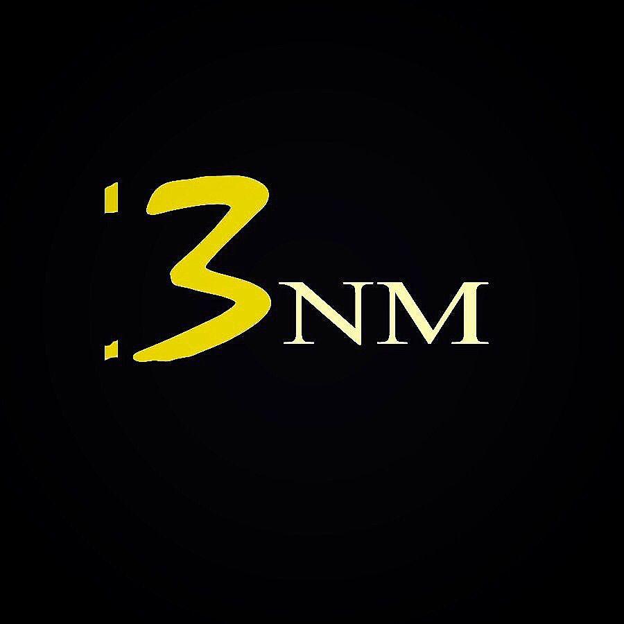 BNM Recording Studio (LLC)