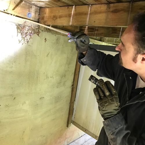 FREE Full-Home Pest Inspection: includes inside, crawl space, and outside of your home!
