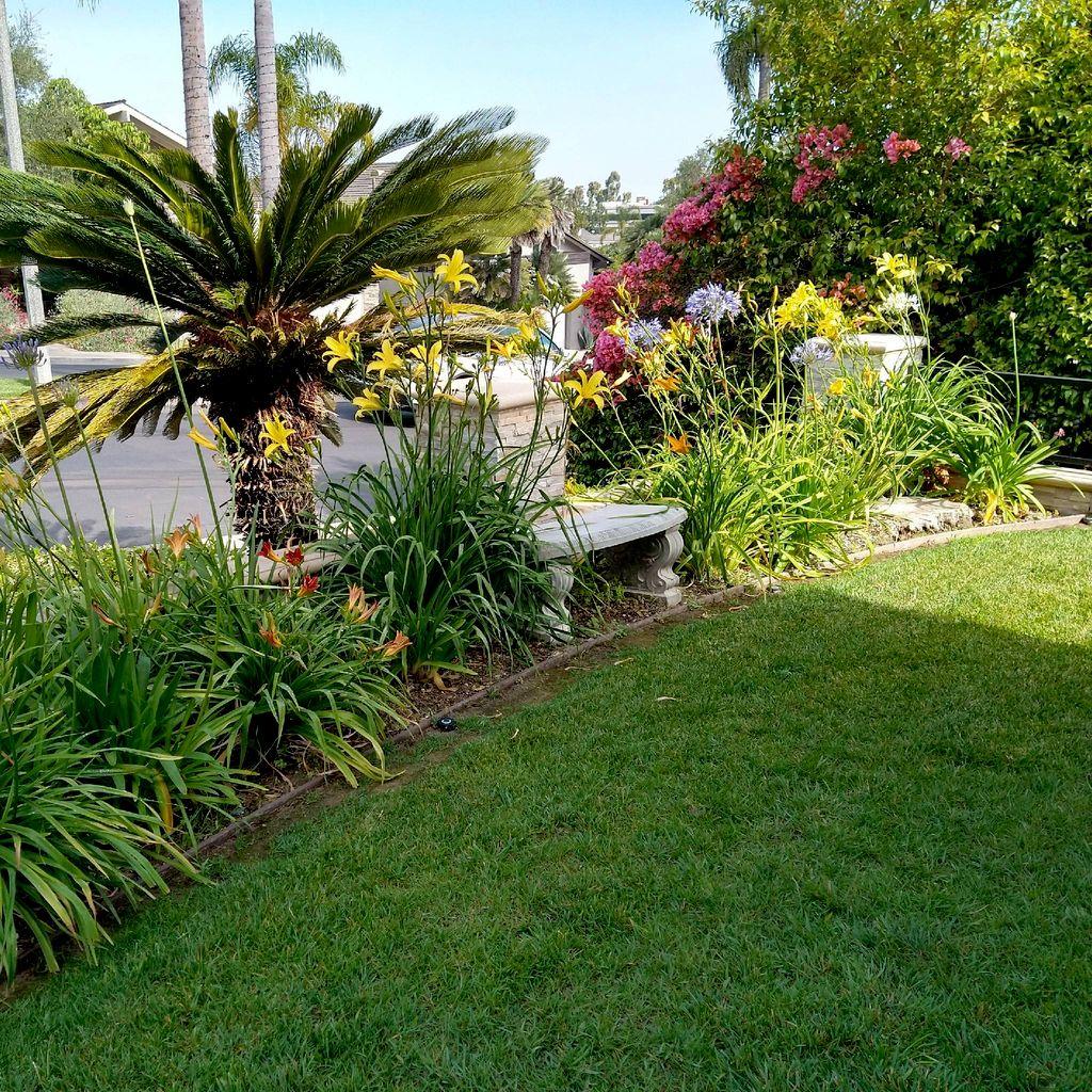 The garden of Eli