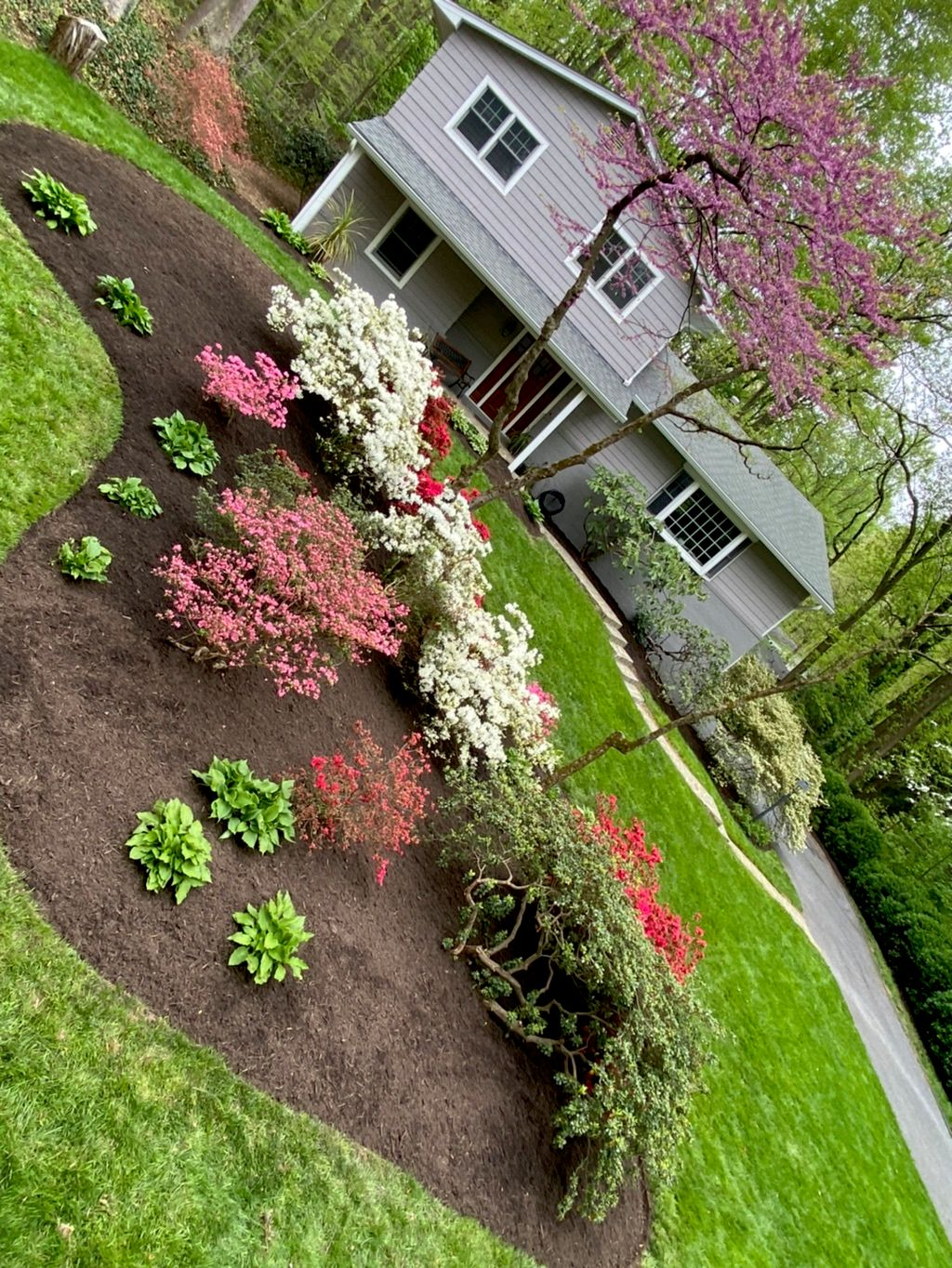 jose tree service and landscaping