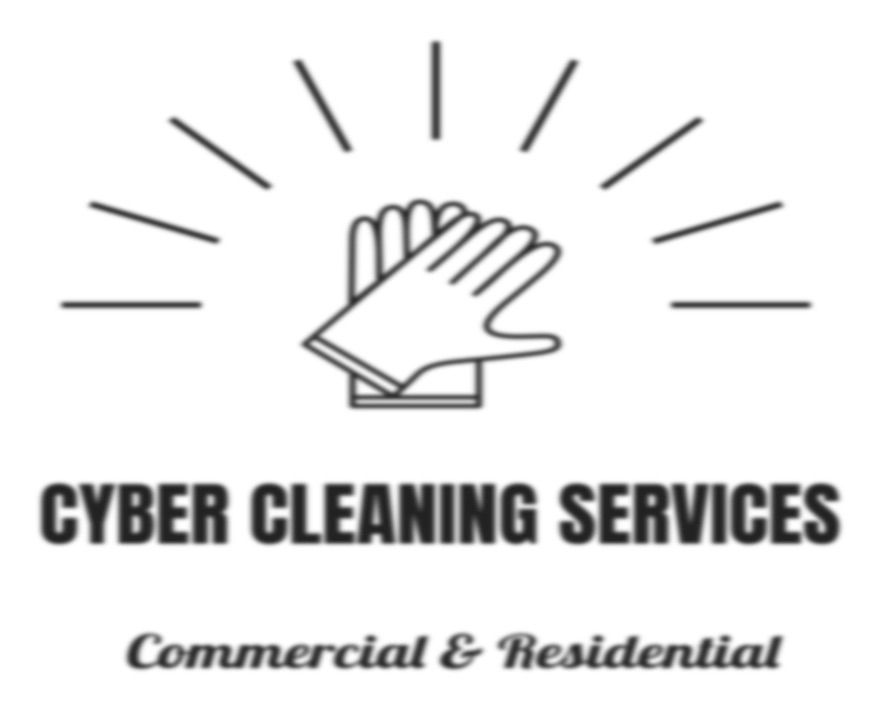 Cyber Cleaning Services