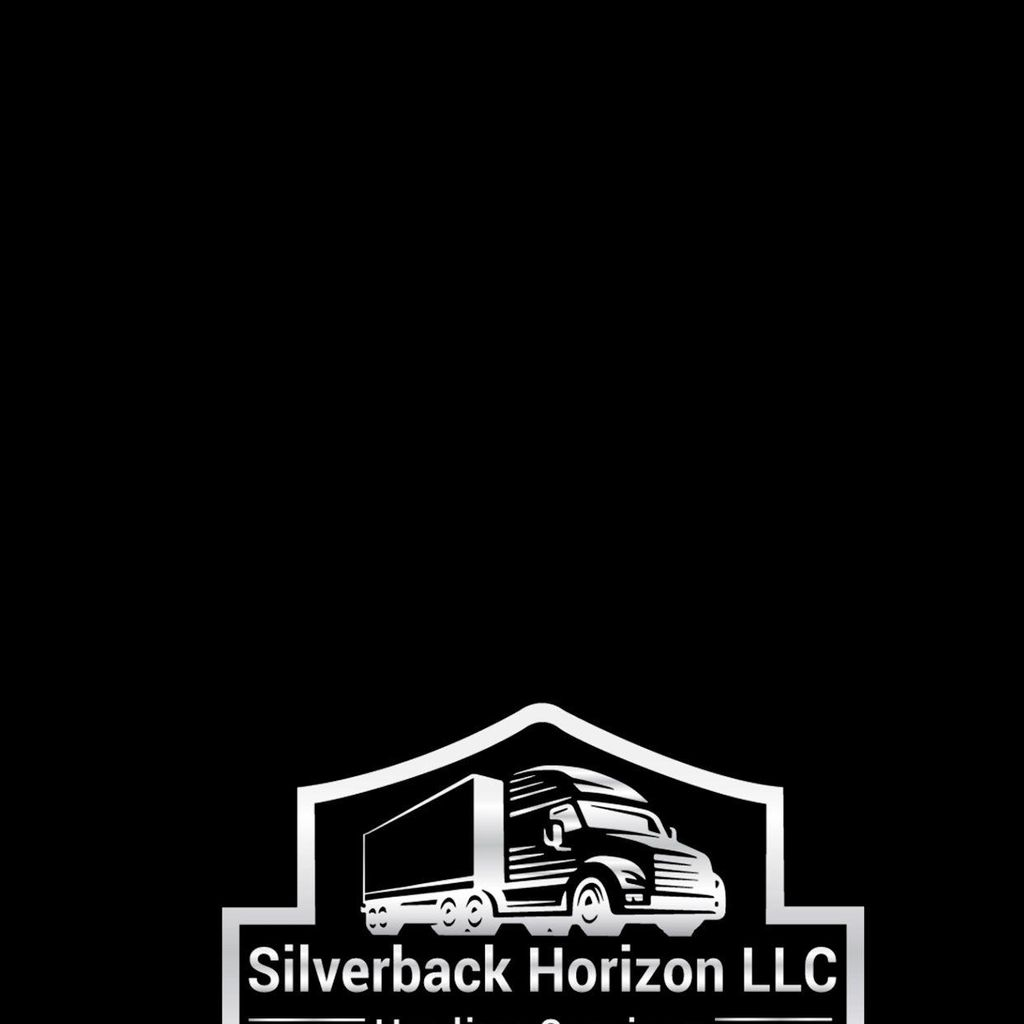 Silver back Horizon LLC