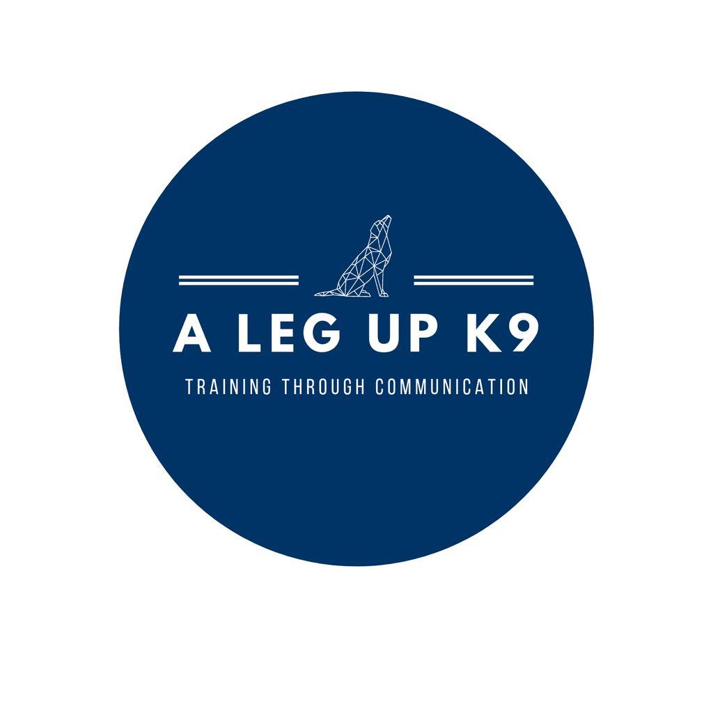 A Leg Up K9