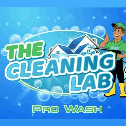 The Cleaning Lab
