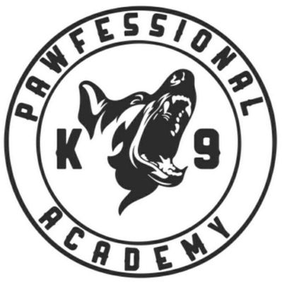 Avatar for Pawfessional Dog Training Academy