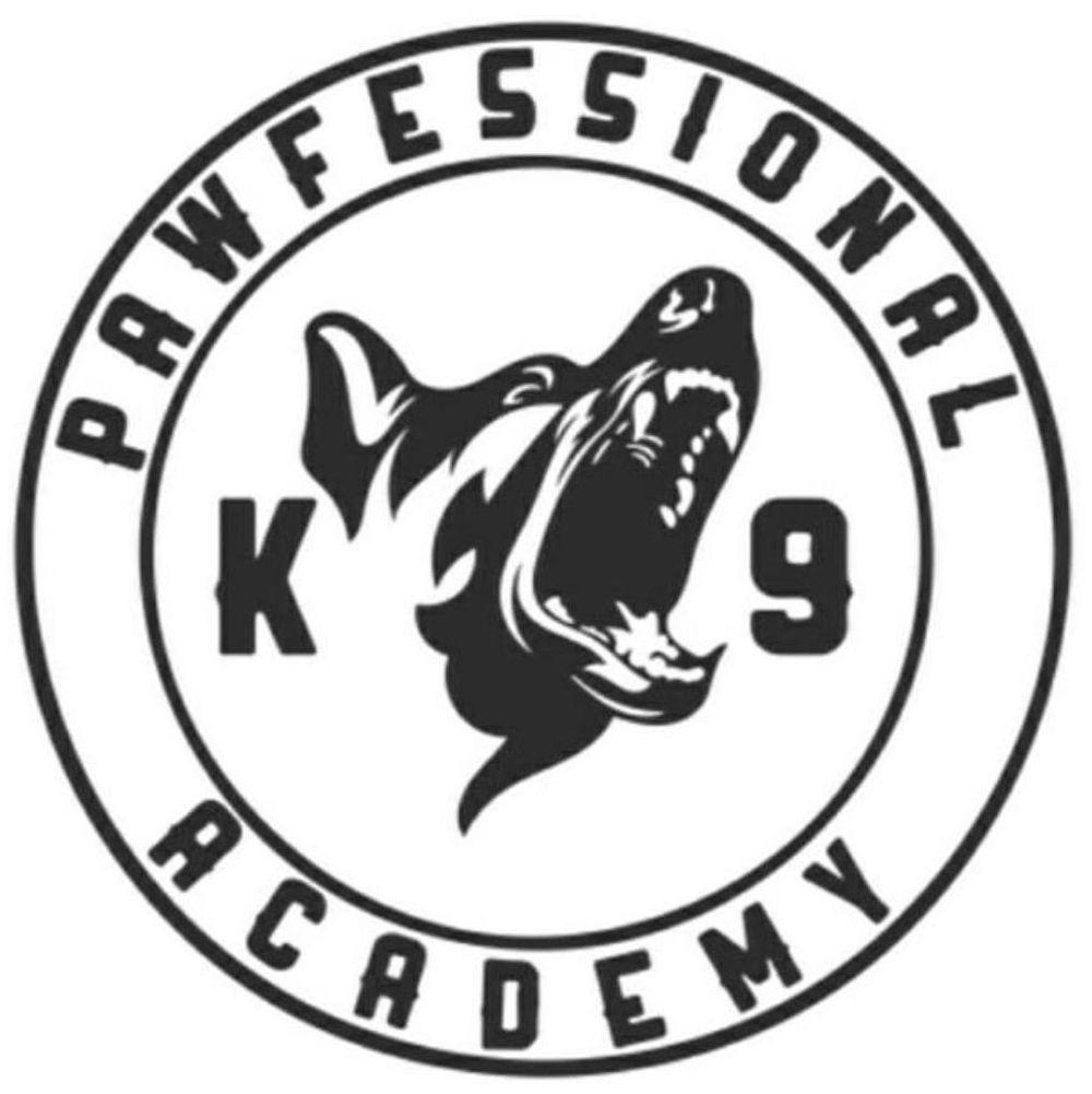 Pawfessional Dog Training Academy