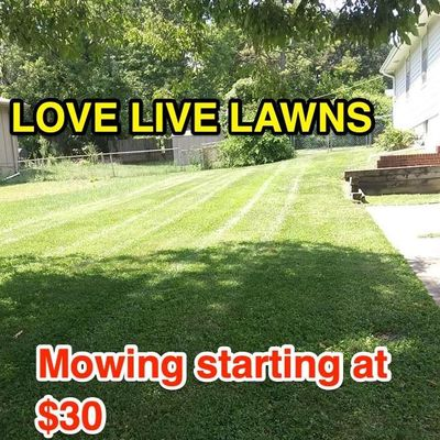 Avatar for LOVE LIVE LAWNS