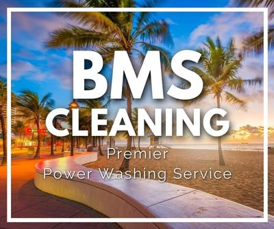 Avatar for BMS cleaning