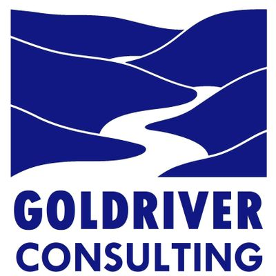 Avatar for GOLDRIVER CONSULTING