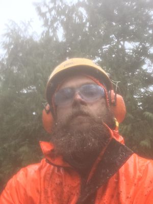 Avatar for Mountain Tree Services