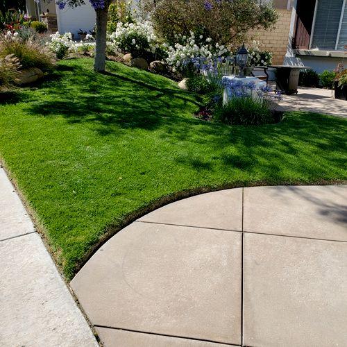 I do maintenance service also freshly mowed grass