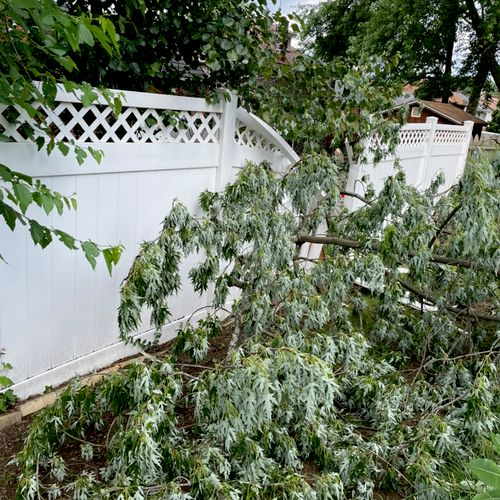 Storm damage response