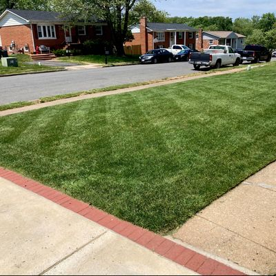 Avatar for EP Mowing & Landscaping