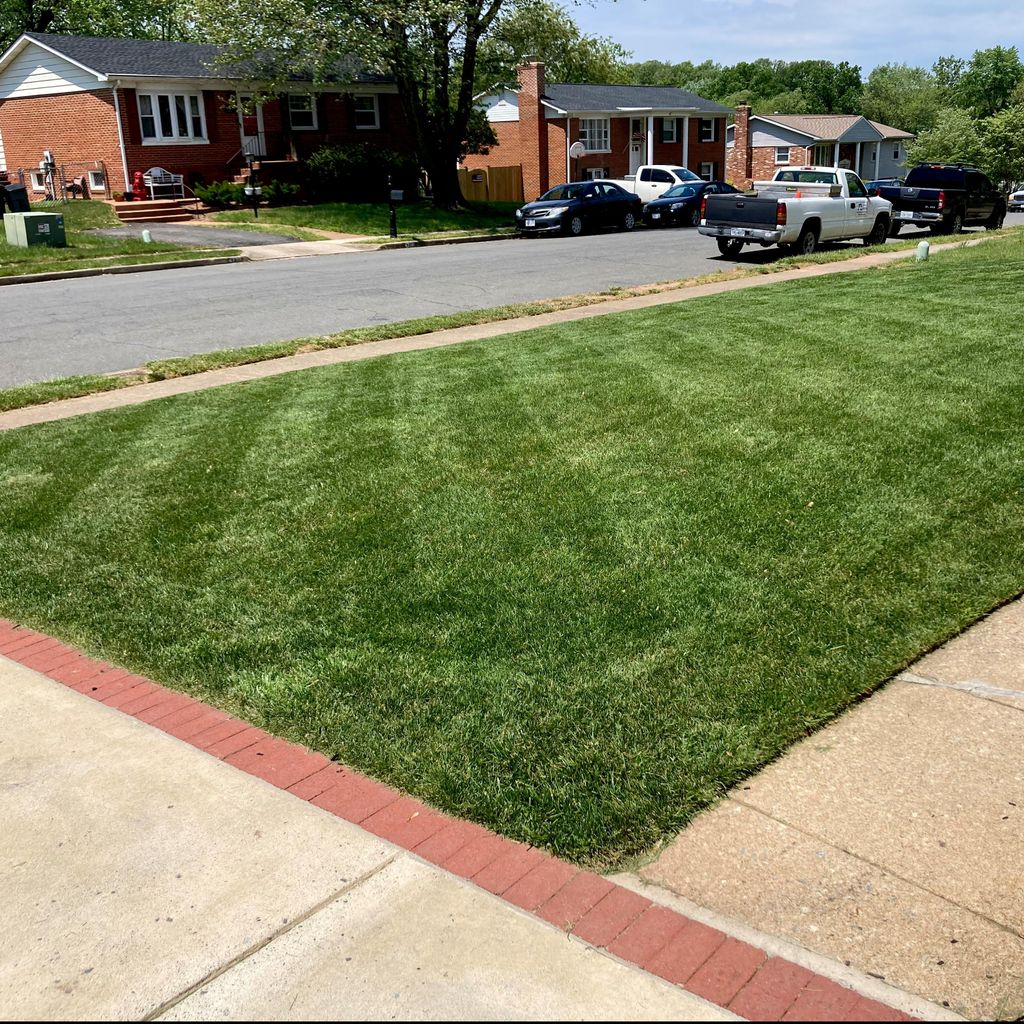 EP Mowing & Landscaping