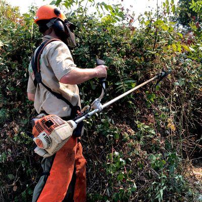 Avatar for Oakland Hills Brush Clearing, LLC