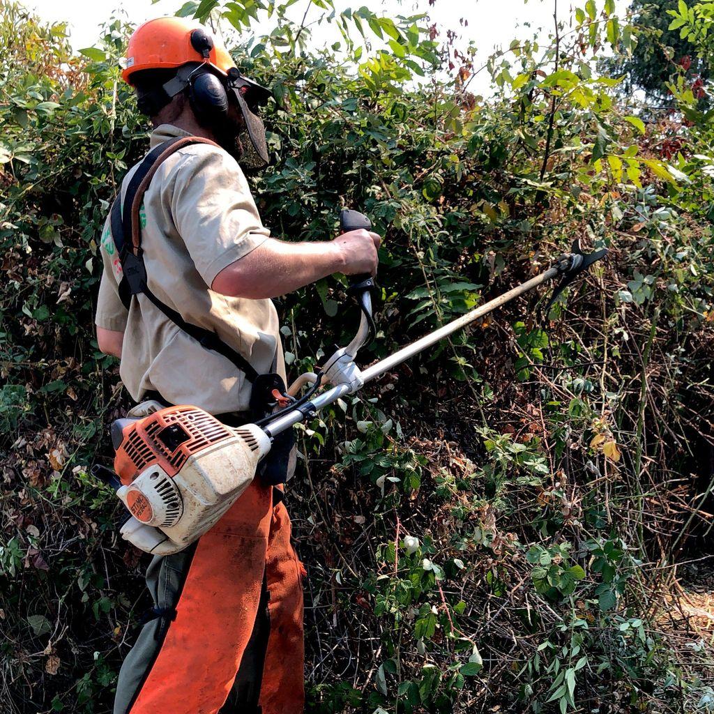 Oakland Hills Brush Clearing, LLC