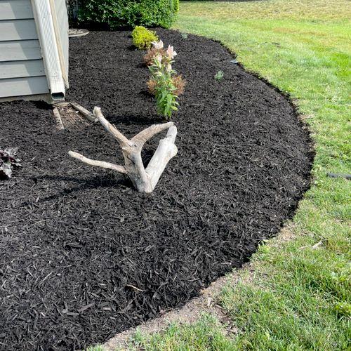 Black mulch.