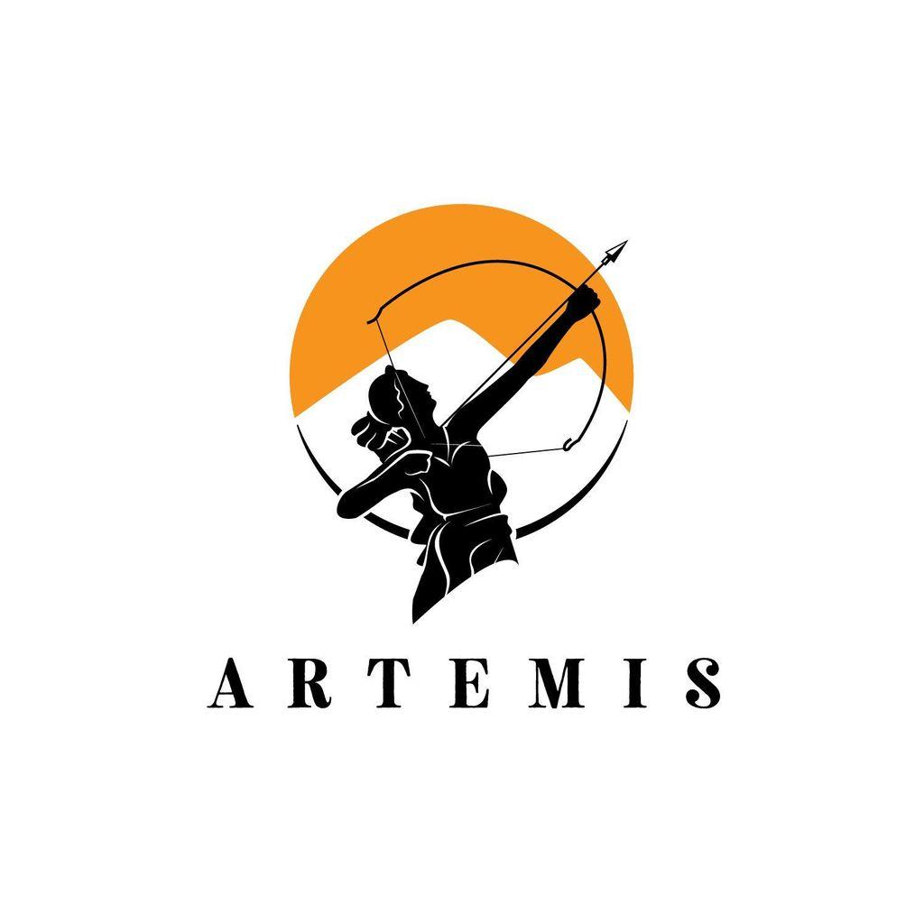 Artemis Security Agency