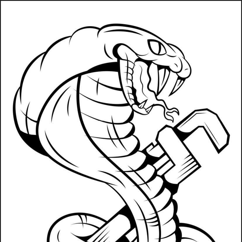 Cobra Plumbing