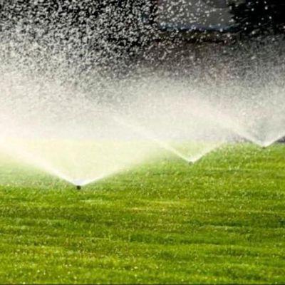 Avatar for Romero's Landscape & Irrigation Services