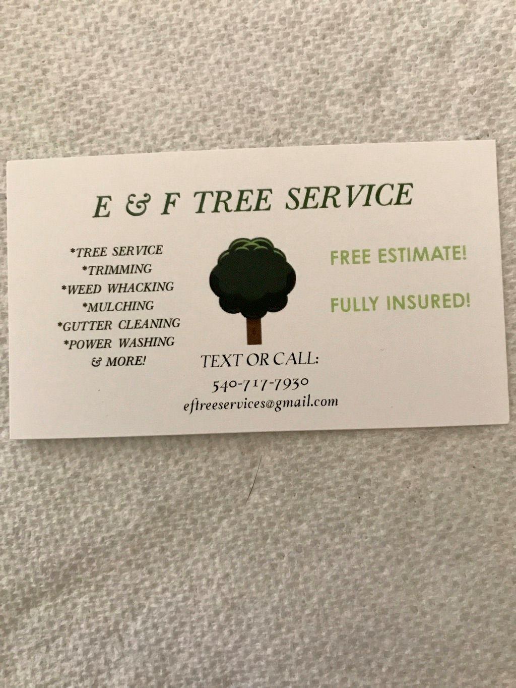 E & F TREE SERVICE