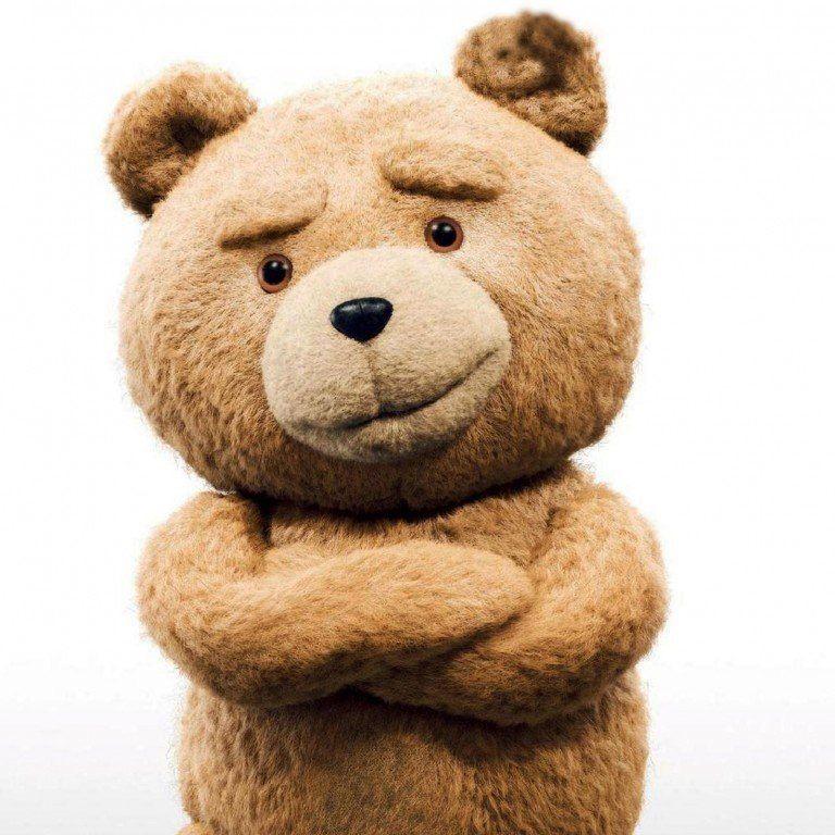 Handy Bear (Fully Vaccinated)