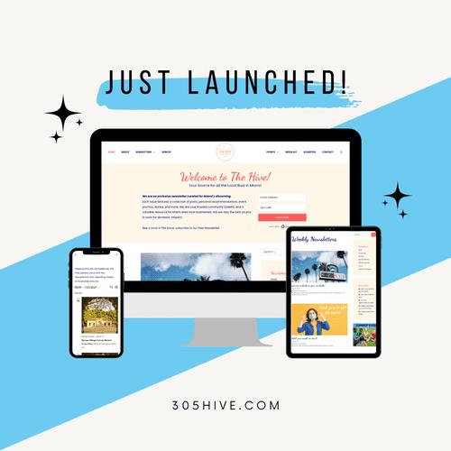 Website hub for newsletter email marketing business