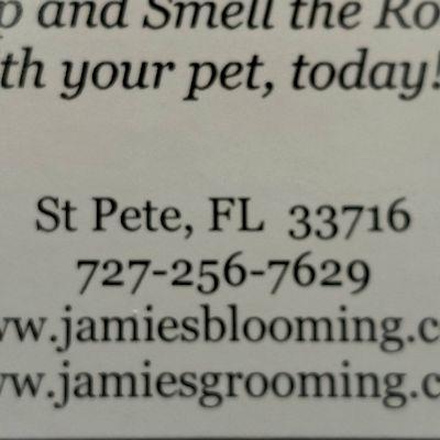 Avatar for Jamie's Grooming & Blooming LLC