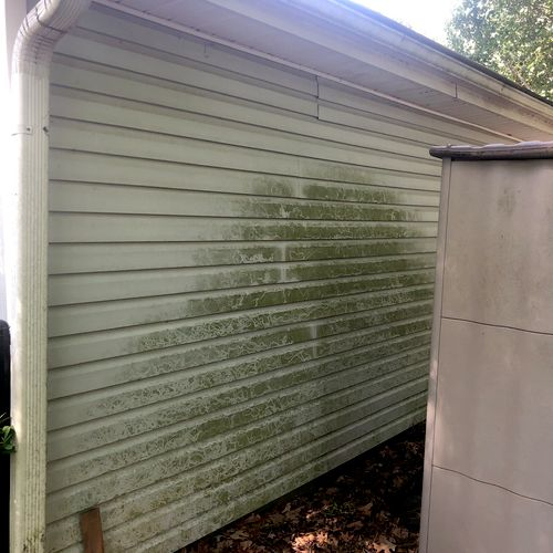 Before picture of algae on siding