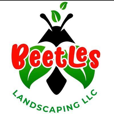 Avatar for Beetles landscaping llc