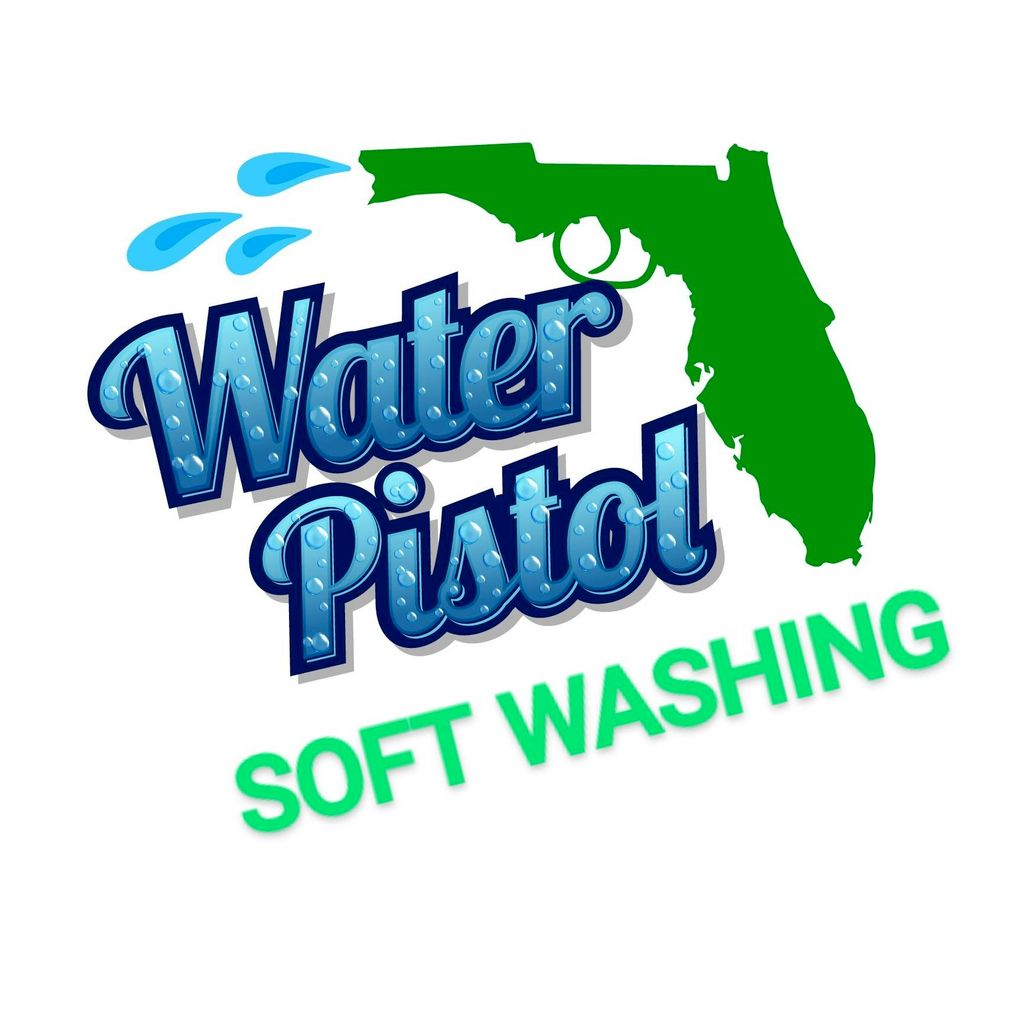 WATER PISTOL PRESSURE WASHING