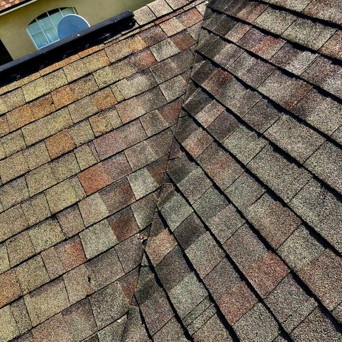 cormally affected roofs