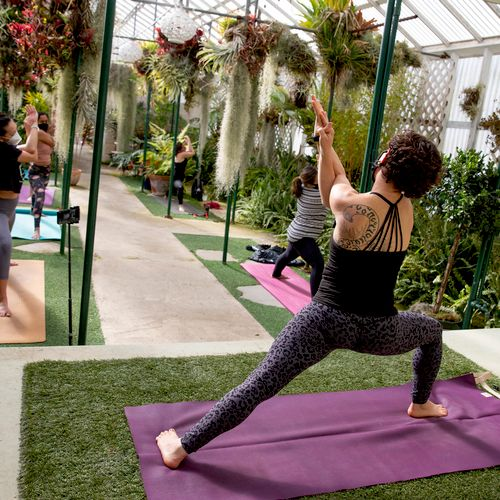 Ask me about Orchid Garden Yoga